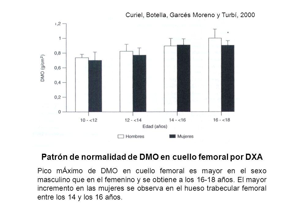 Patrón de normalidad de DMO en cuello femoral por DXA