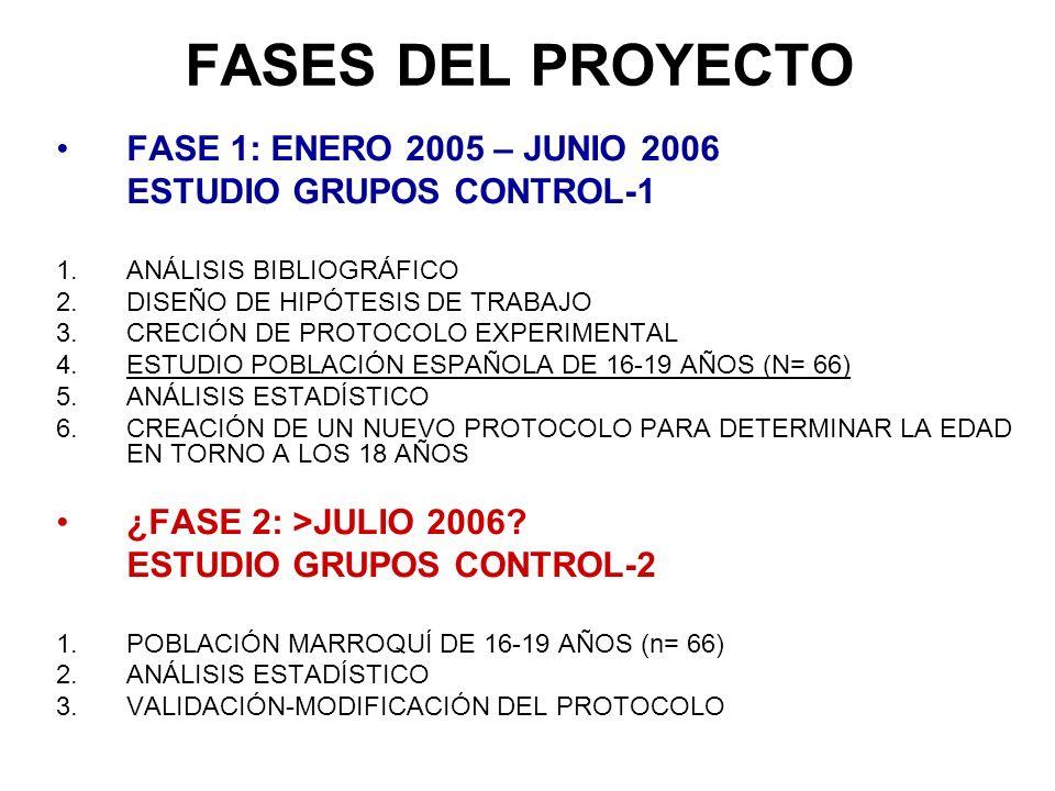 FASES DEL PROYECTO FASE 1: ENERO 2005 – JUNIO 2006