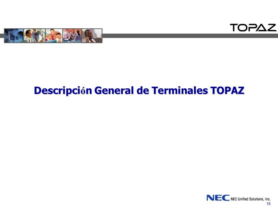 Descripción General de Terminales TOPAZ