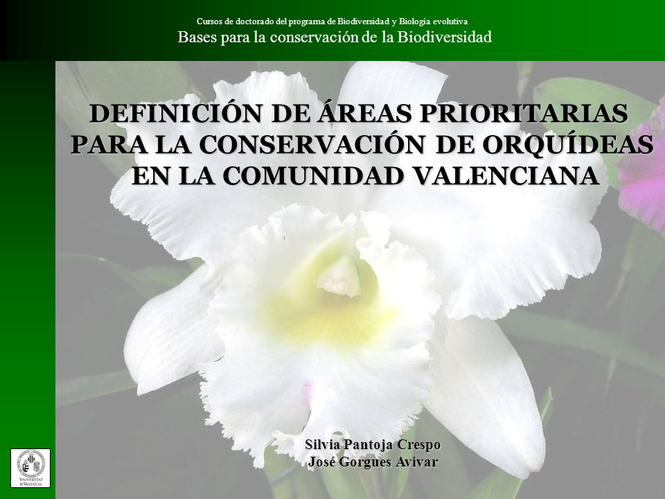 DEFINICIÓN DE ÁREAS PRIORITARIAS PARA LA CONSERVACIÓN DE ORQUÍDEAS