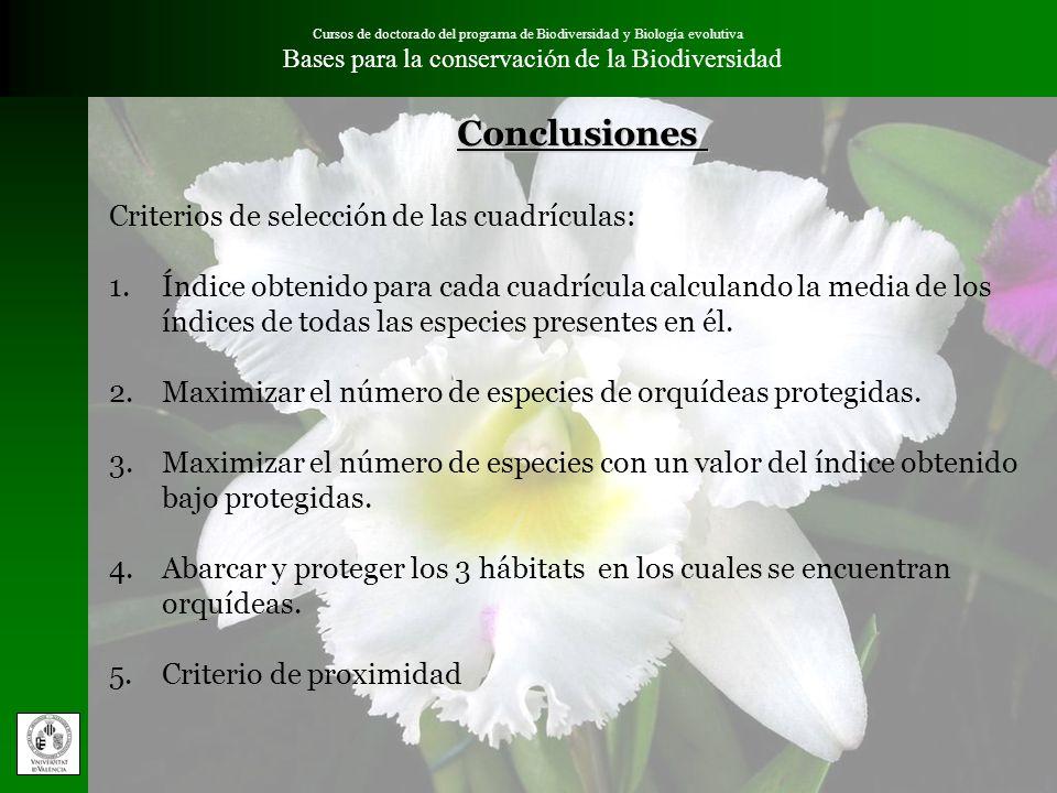 Conclusiones Criterios de selección de las cuadrículas: