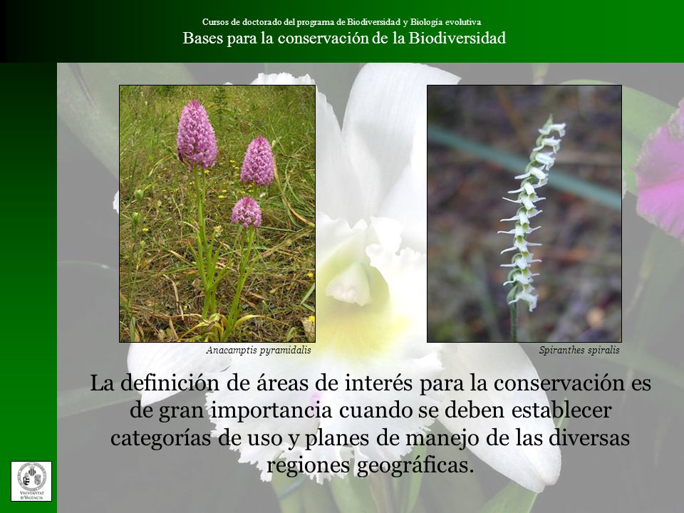 Cursos de doctorado del programa de Biodiversidad y Biología evolutiva