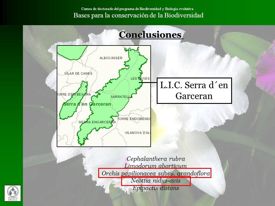 Conclusiones L.I.C. Serra d´en Garceran