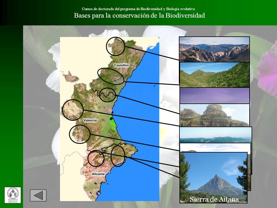Sierra de Utiel Bases para la conservación de la Biodiversidad
