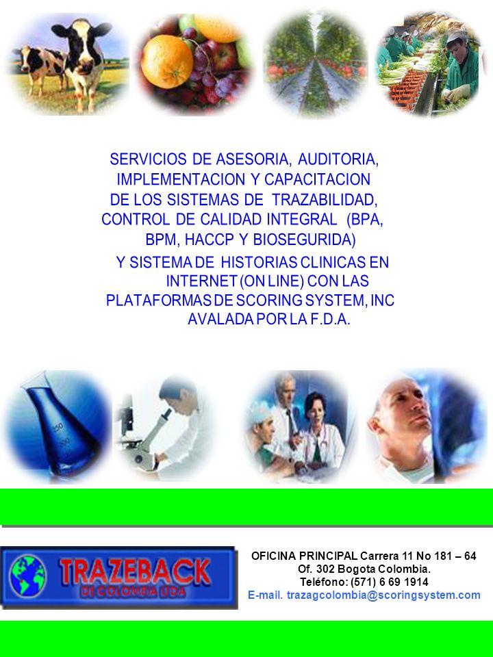 SERVICIOS DE ASESORIA, AUDITORIA, IMPLEMENTACION Y CAPACITACION