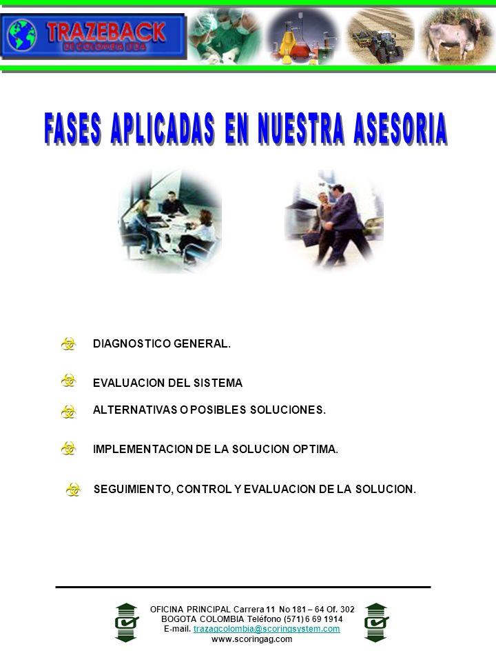 FASES APLICADAS EN NUESTRA ASESORIA