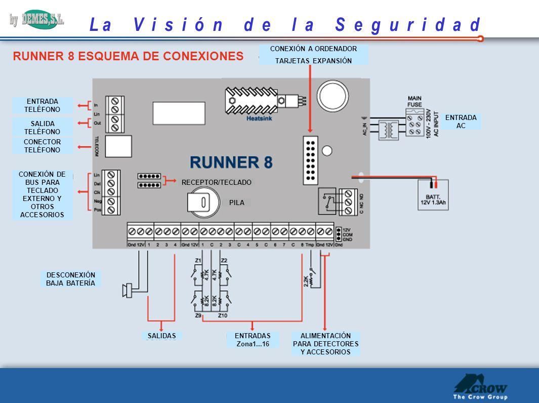 RUNNER 8 ESQUEMA DE CONEXIONES