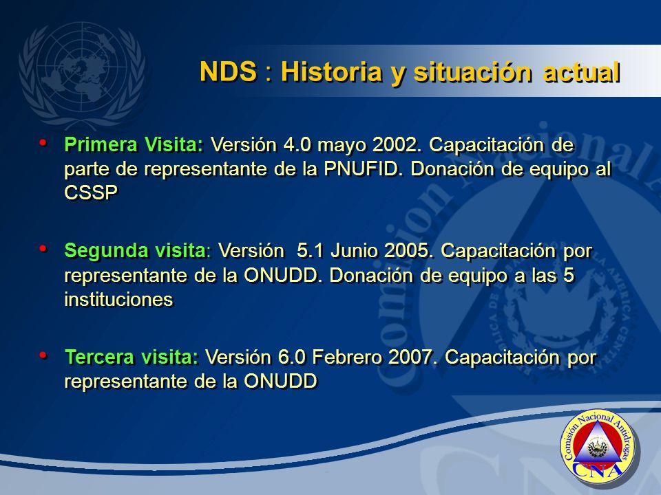 NDS : Historia y situación actual