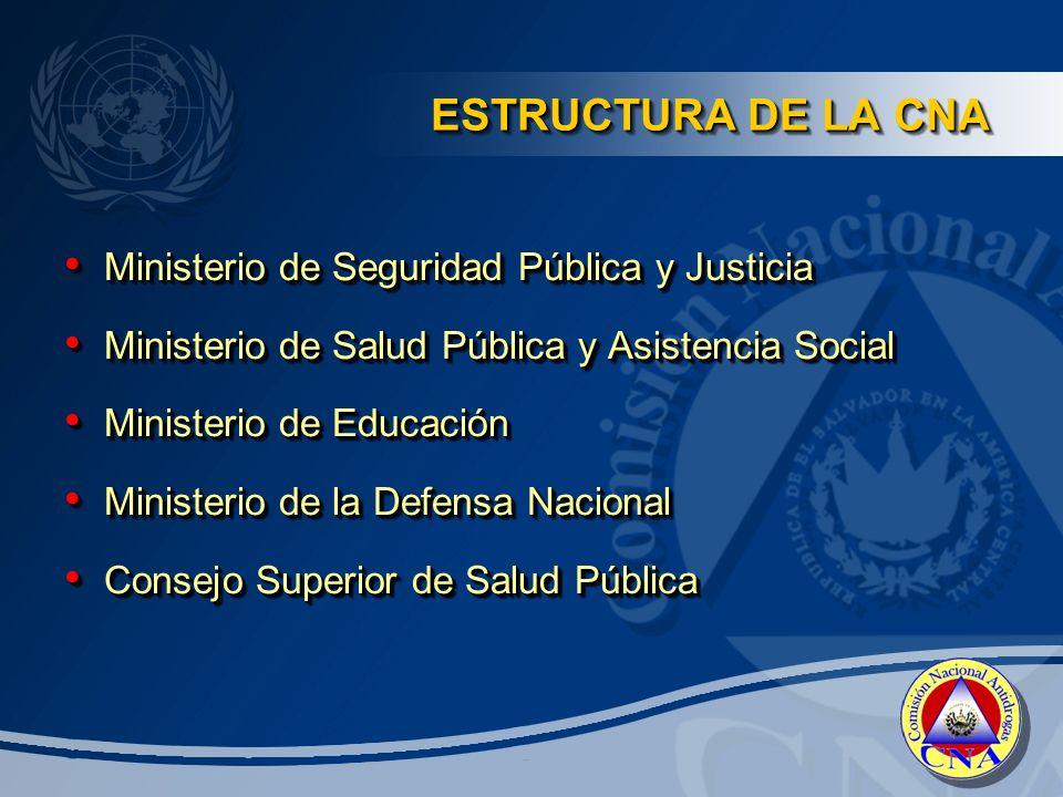 ESTRUCTURA DE LA CNA Ministerio de Seguridad Pública y Justicia