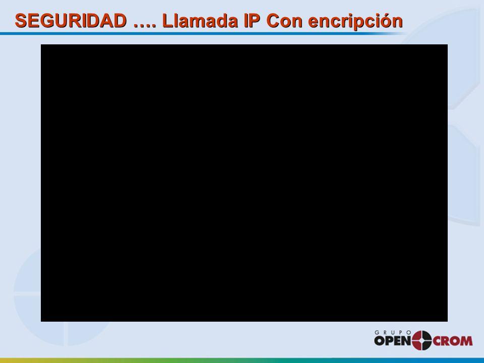 SEGURIDAD …. Llamada IP Con encripción