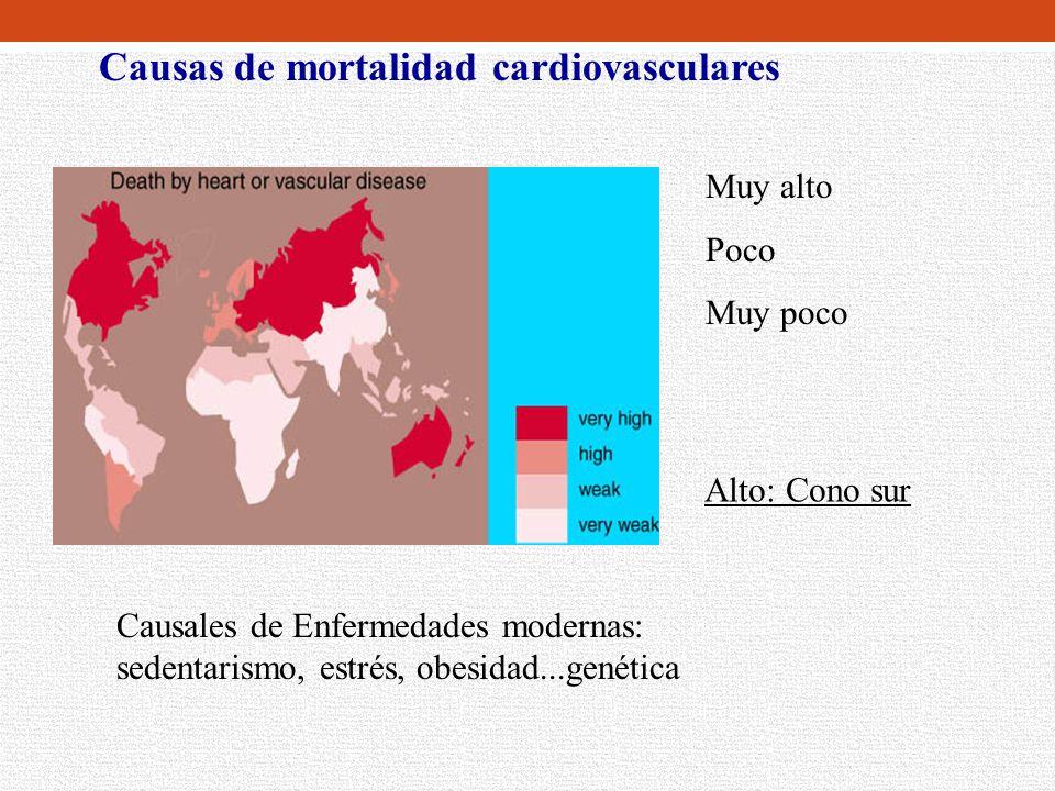 Causas de mortalidad cardiovasculares