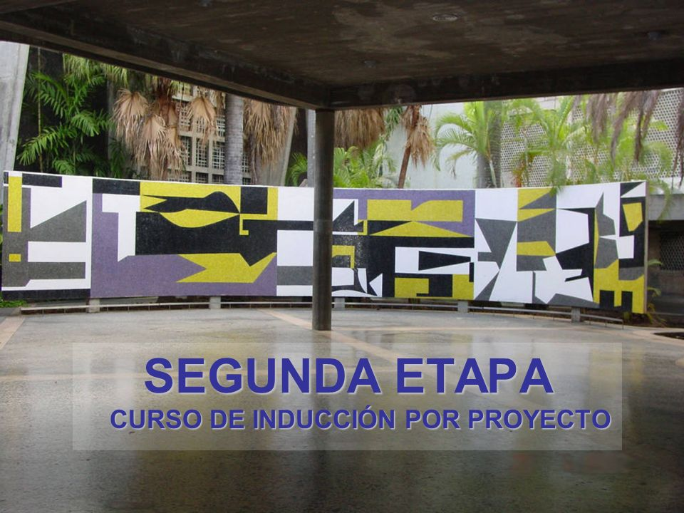 SEGUNDA ETAPA CURSO DE INDUCCIÓN POR PROYECTO
