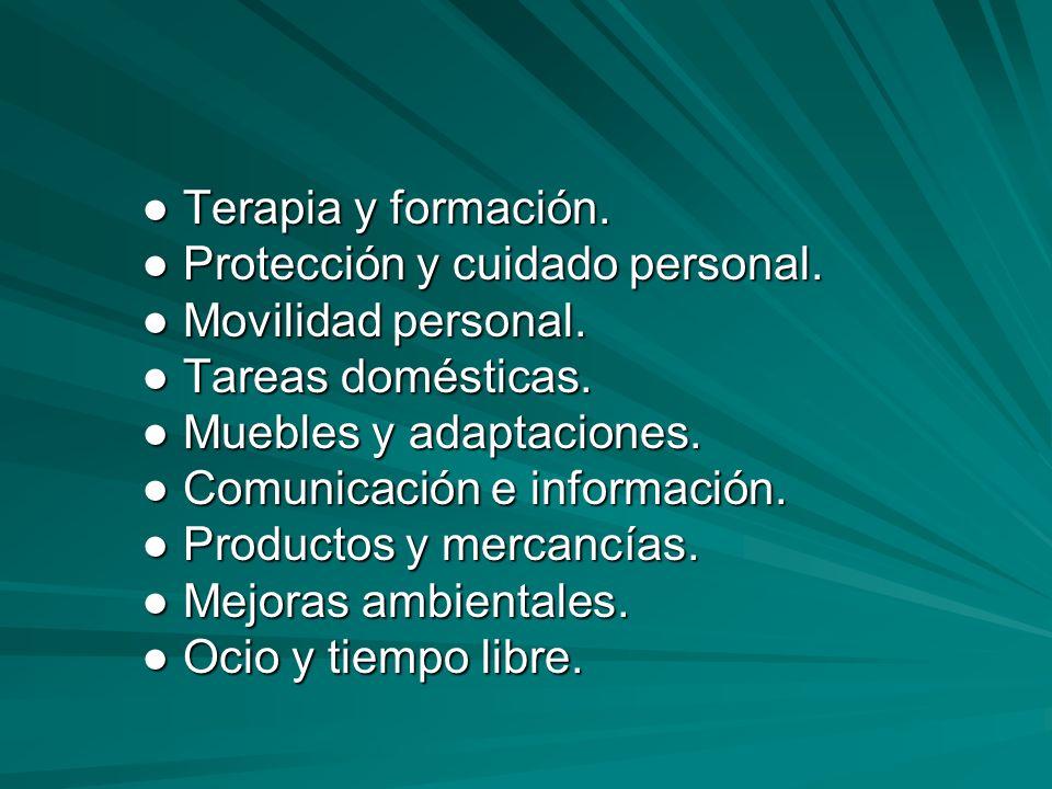 ● Terapia y formación. ● Protección y cuidado personal. ● Movilidad personal. ● Tareas domésticas.