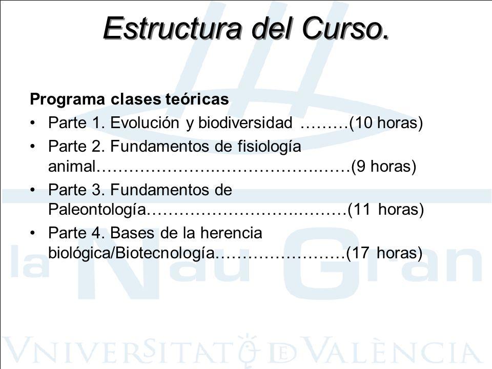 Estructura del Curso. Programa clases teóricas
