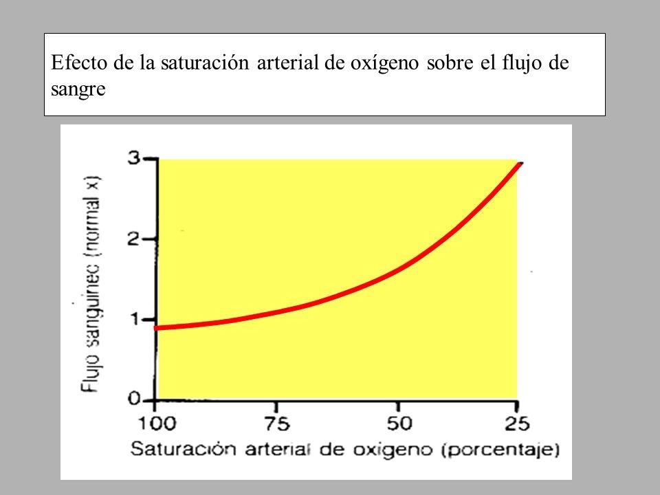 Efecto de la saturación arterial de oxígeno sobre el flujo de sangre