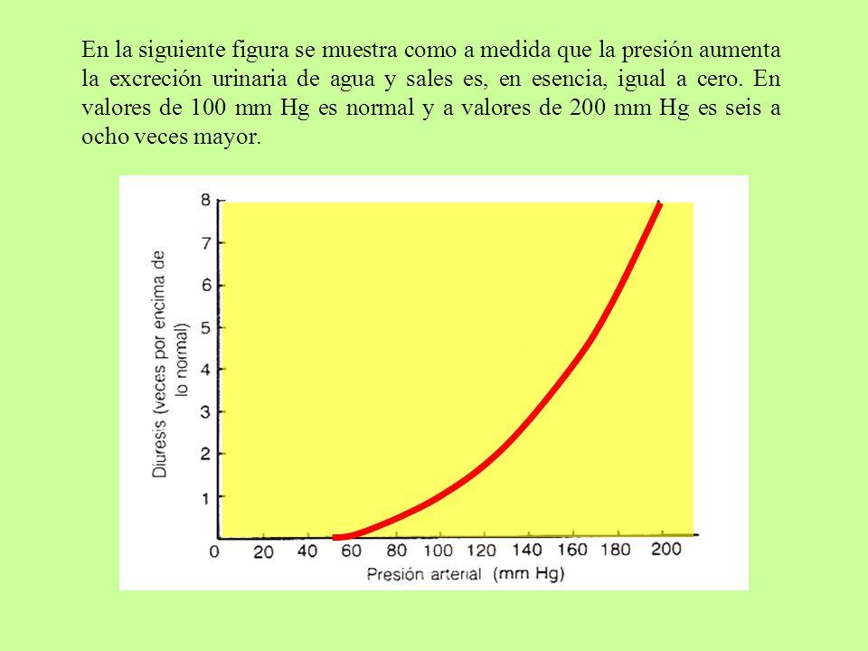 En la siguiente figura se muestra como a medida que la presión aumenta la excreción urinaria de agua y sales es, en esencia, igual a cero.