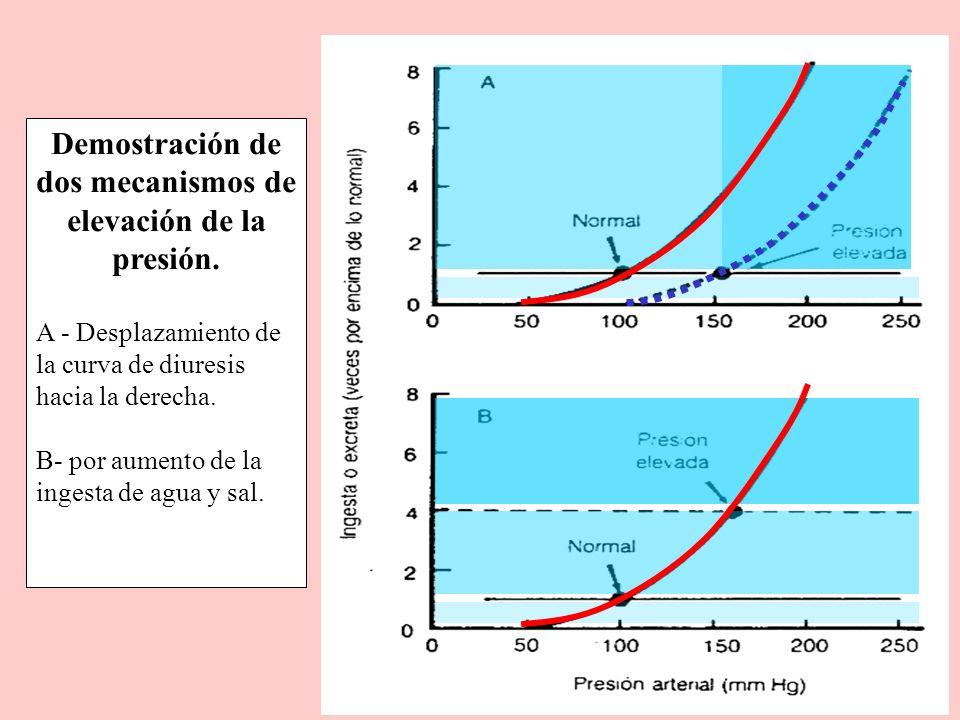 Demostración de dos mecanismos de elevación de la presión.