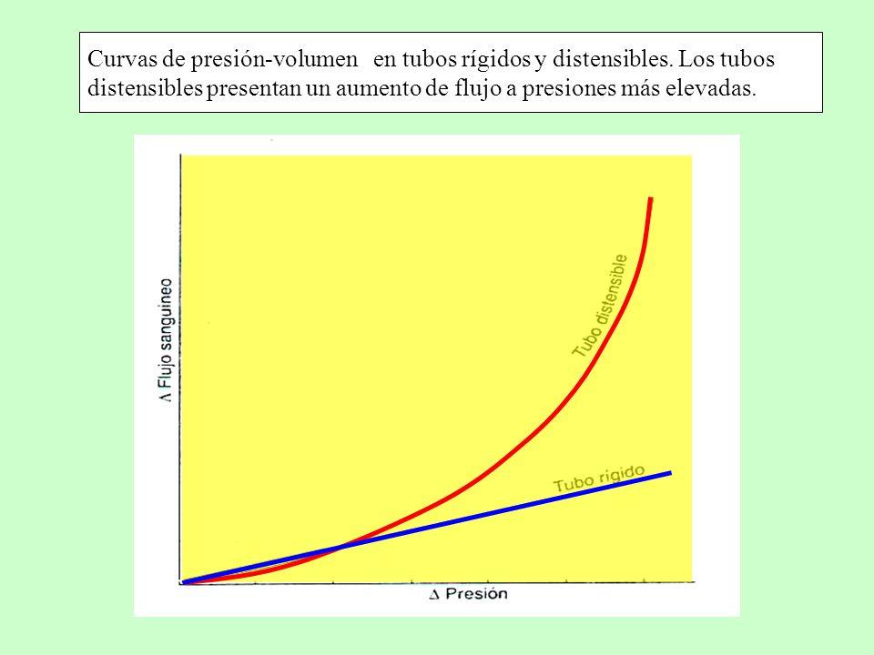Curvas de presión-volumen en tubos rígidos y distensibles
