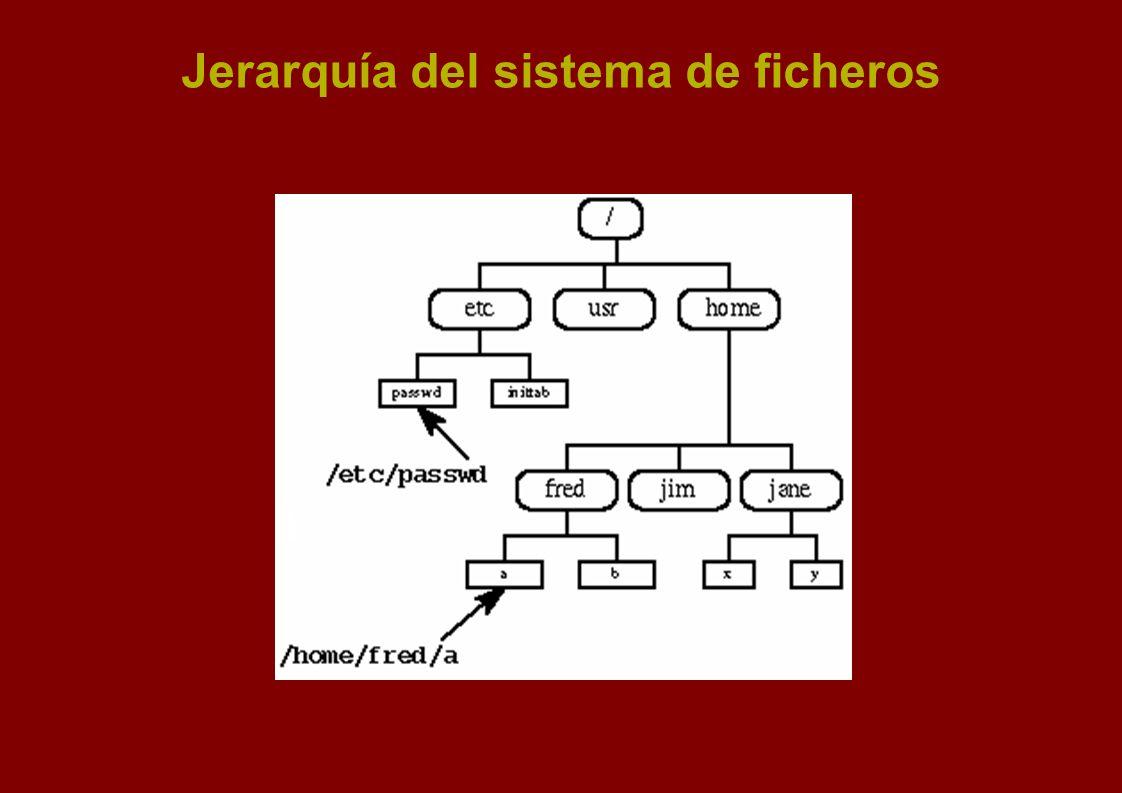 Jerarquía del sistema de ficheros