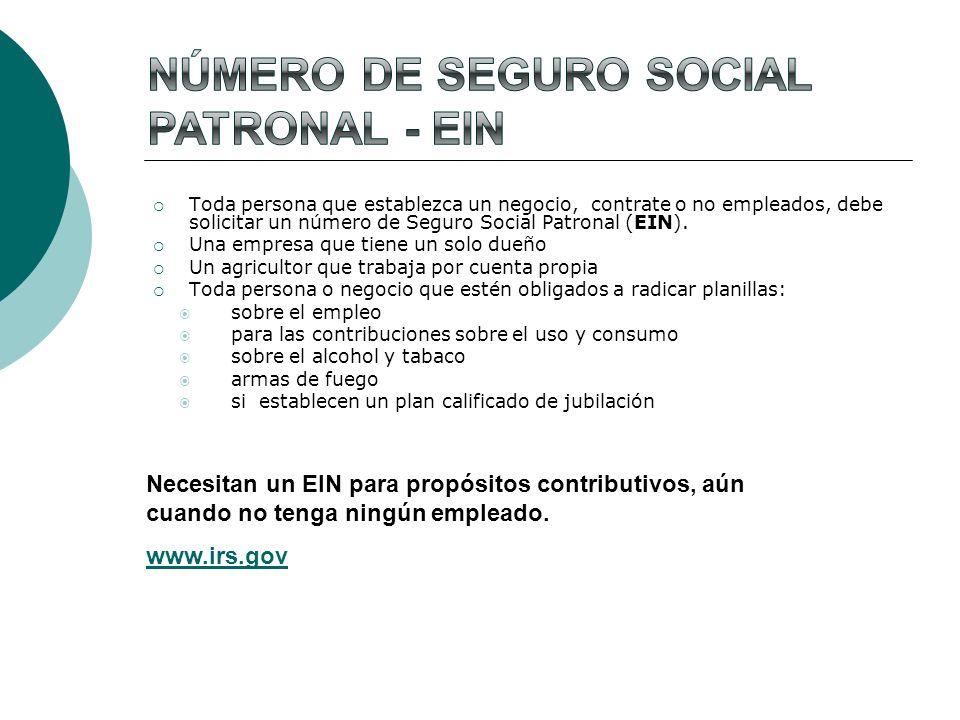 Número de Seguro Social Patronal - ein