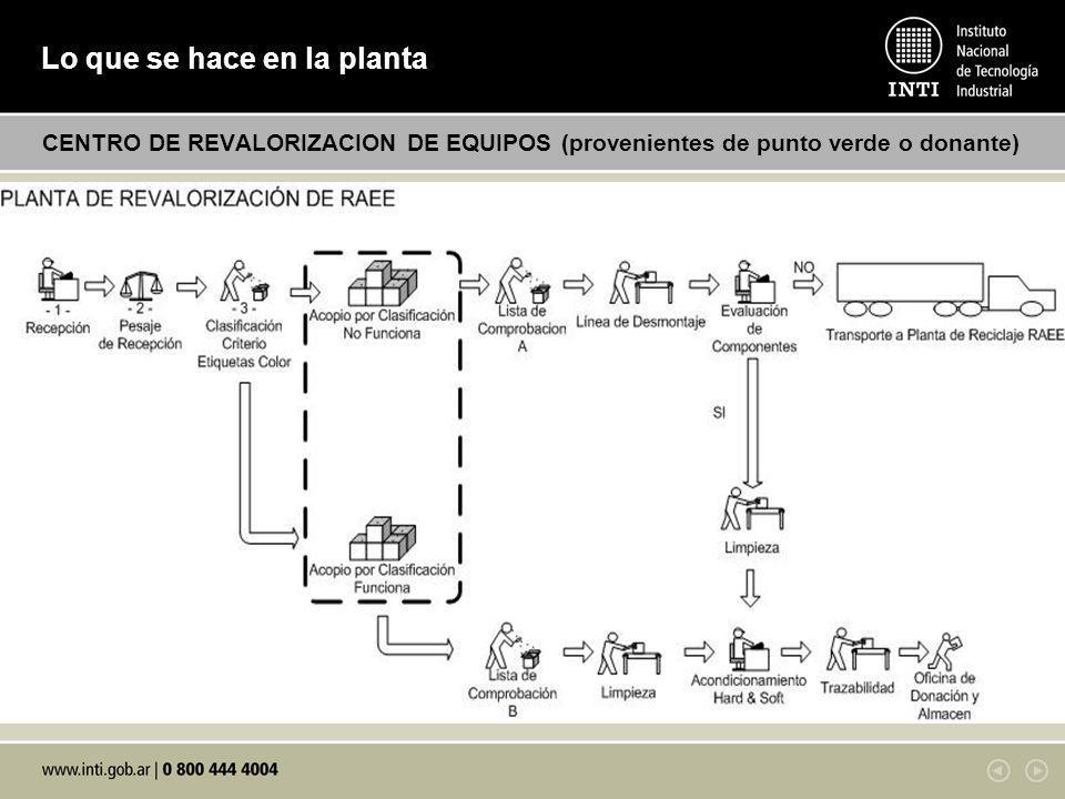 Lo que se hace en la planta
