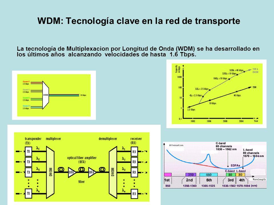 WDM: Tecnología clave en la red de transporte