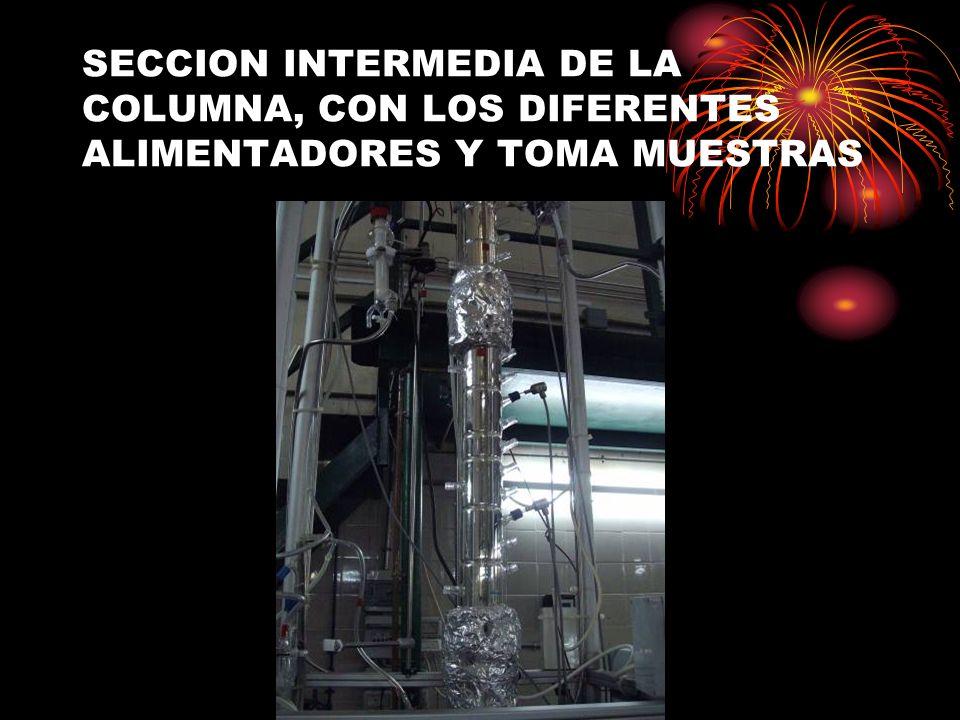 SECCION INTERMEDIA DE LA COLUMNA, CON LOS DIFERENTES ALIMENTADORES Y TOMA MUESTRAS