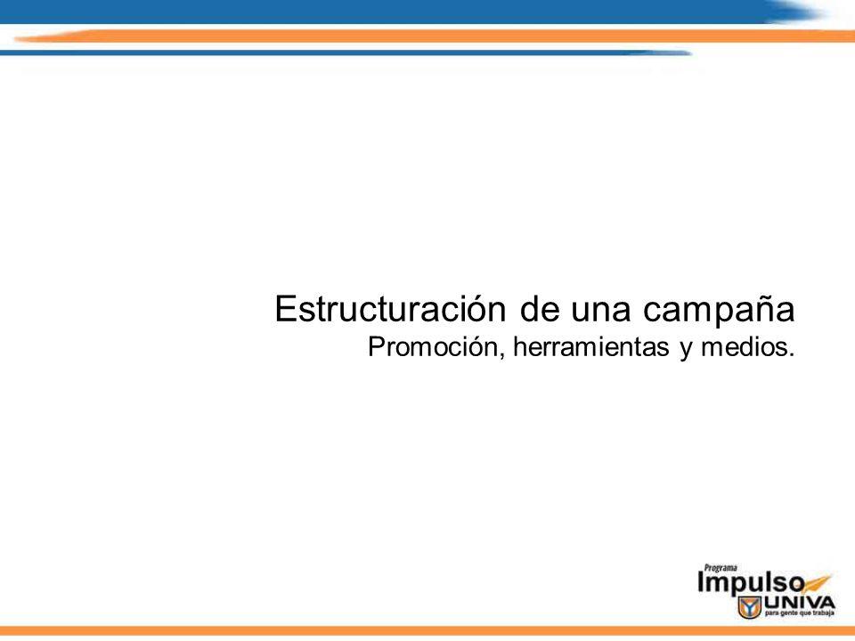 Estructuración de una campaña Promoción, herramientas y medios.