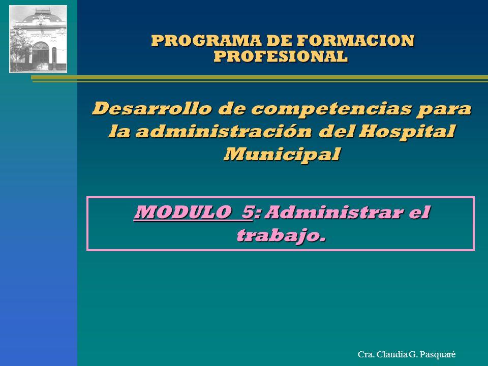PROGRAMA DE FORMACION PROFESIONAL