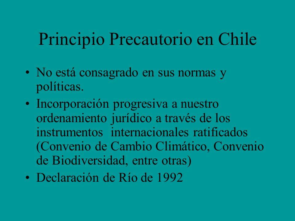 Principio Precautorio en Chile