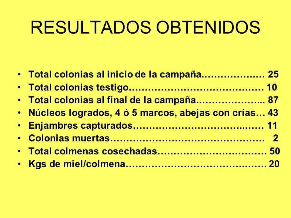 RESULTADOS OBTENIDOS Total colonias al inicio de la campaña.…………….… 25