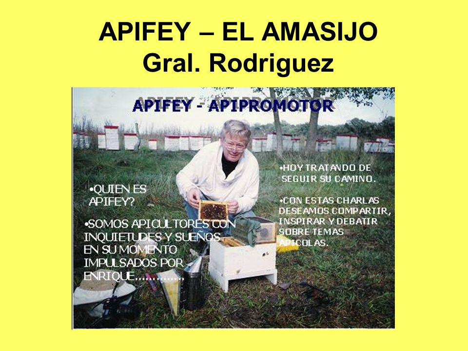 APIFEY – EL AMASIJO Gral. Rodriguez