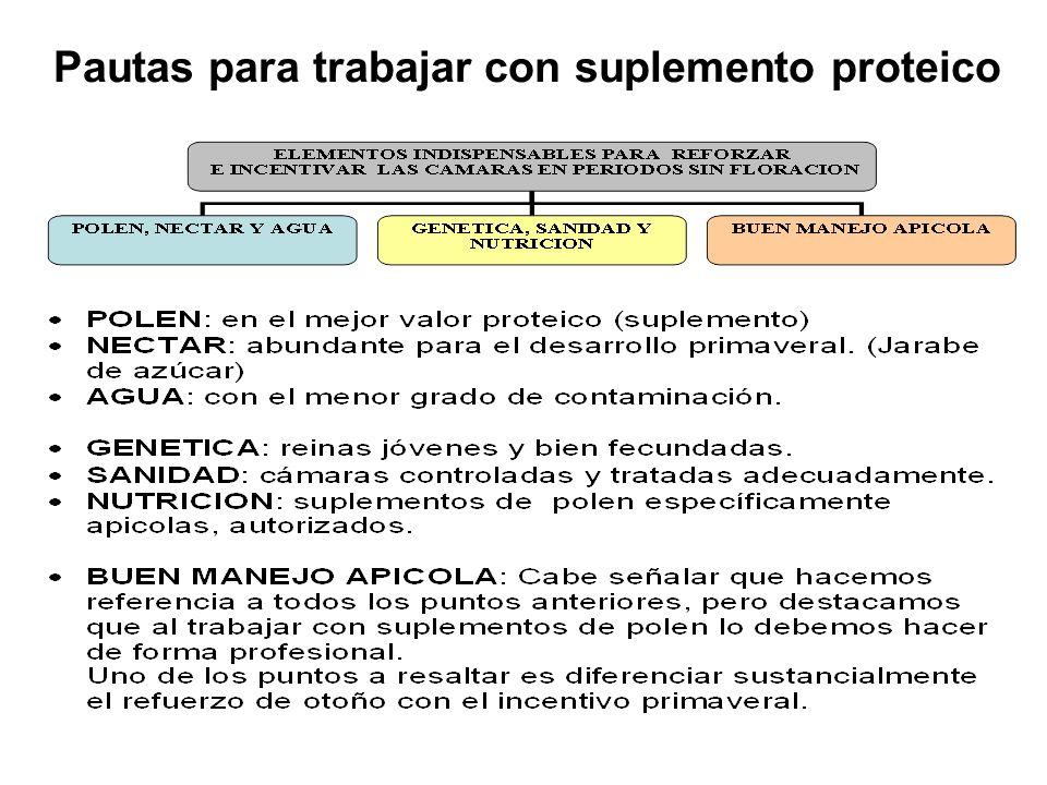 Pautas para trabajar con suplemento proteico