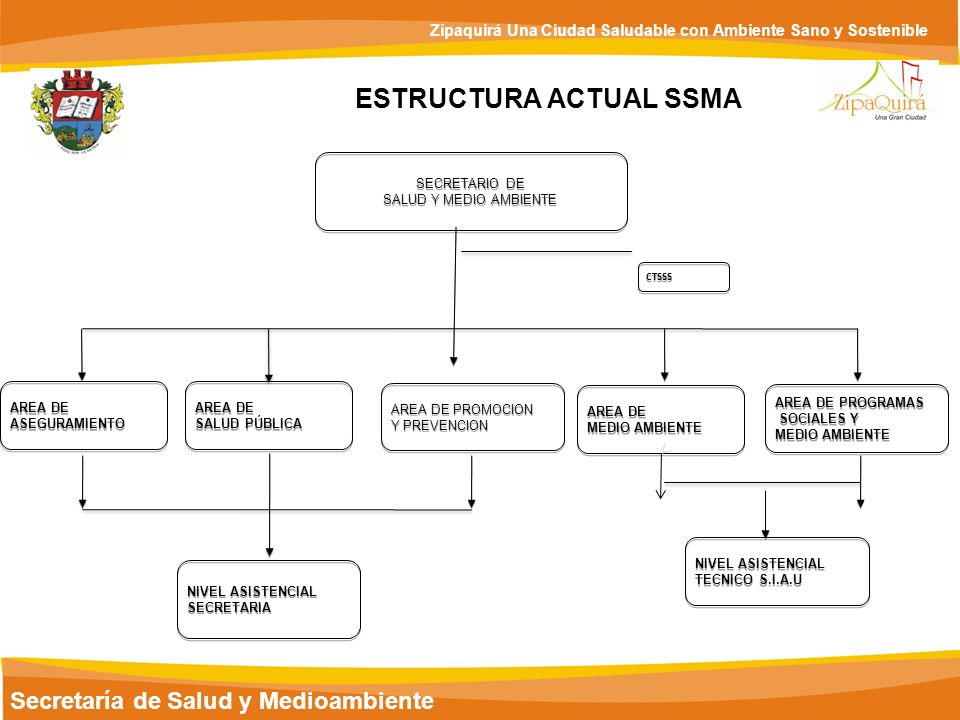 ESTRUCTURA ACTUAL SSMA