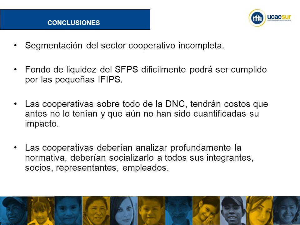 Segmentación del sector cooperativo incompleta.