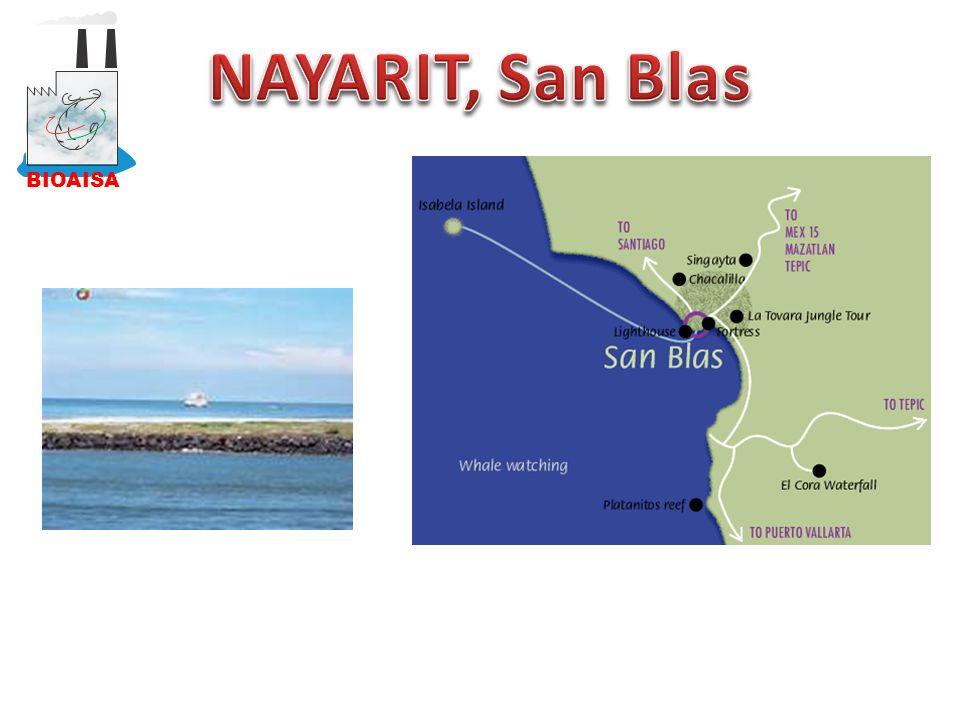 BIOAISA NAYARIT, San Blas