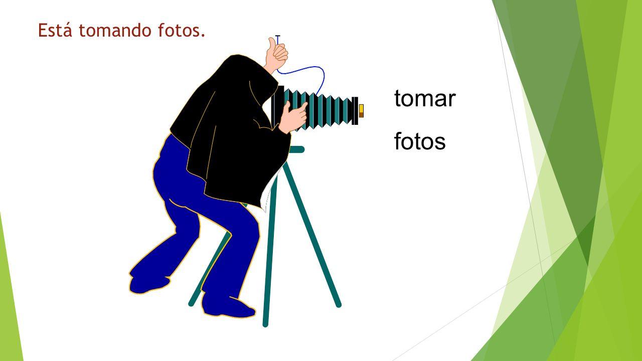 Está tomando fotos. ¿Qué está haciendo tomar fotos