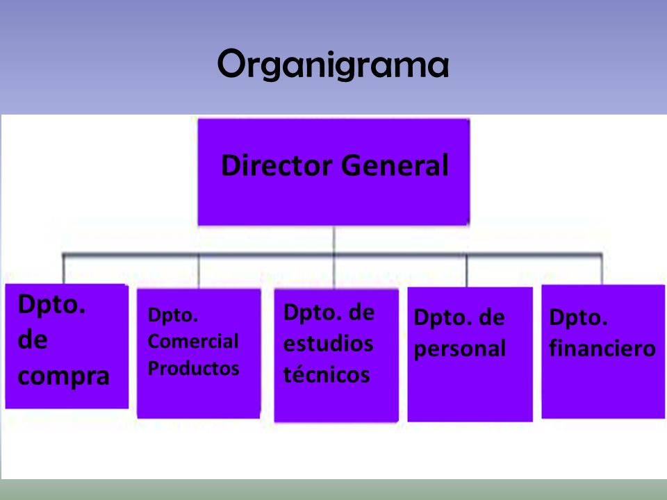 Organigrama Director General Dpto. de compra