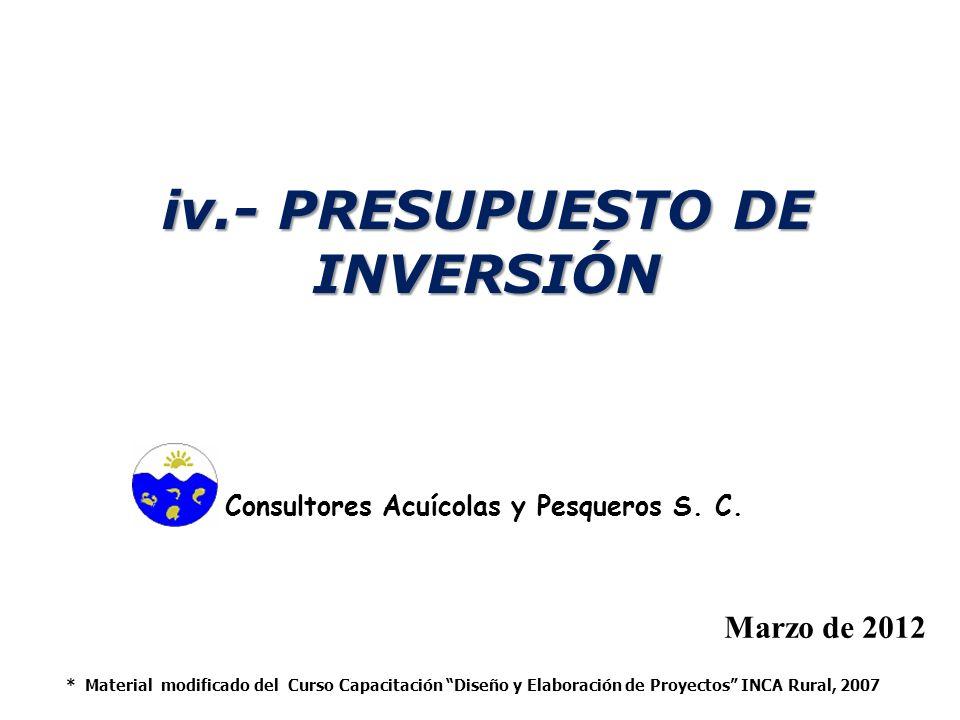 iv.- PRESUPUESTO DE INVERSIÓN