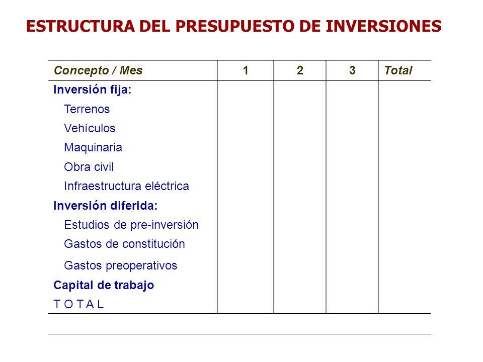 ESTRUCTURA DEL PRESUPUESTO DE INVERSIONES