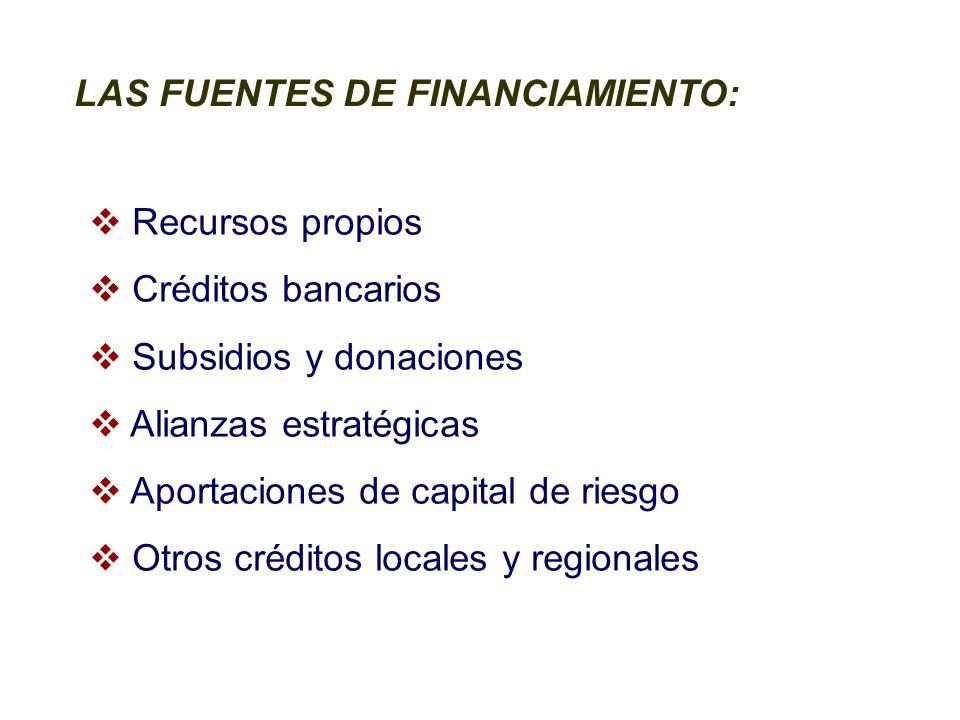 LAS FUENTES DE FINANCIAMIENTO: