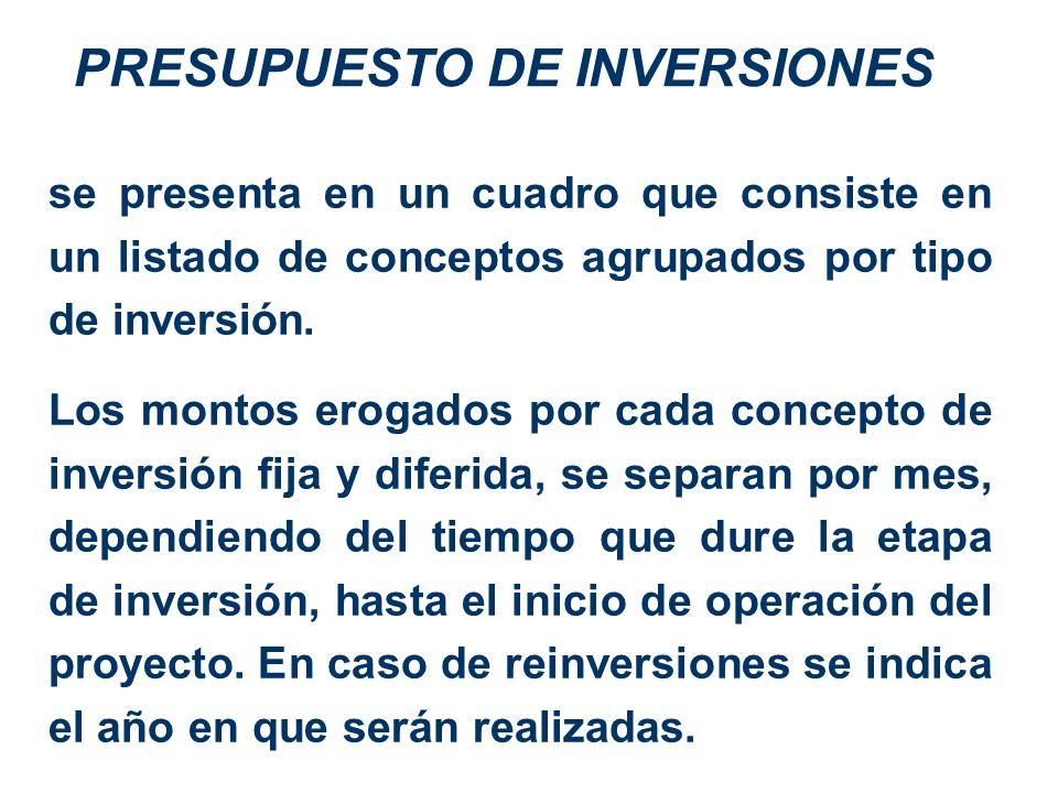 PRESUPUESTO DE INVERSIONES