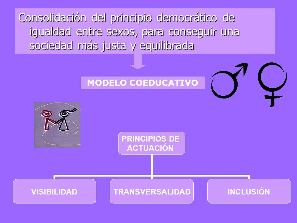 Consolidación del principio democrático de igualdad entre sexos, para conseguir una sociedad más justa y equilibrada