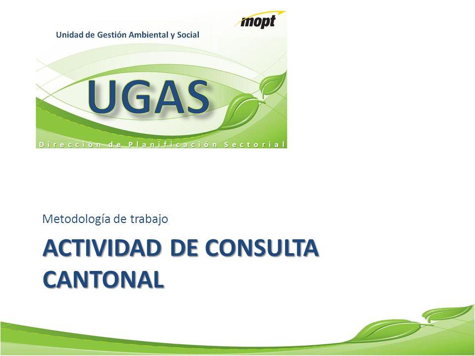 Actividad de Consulta Cantonal