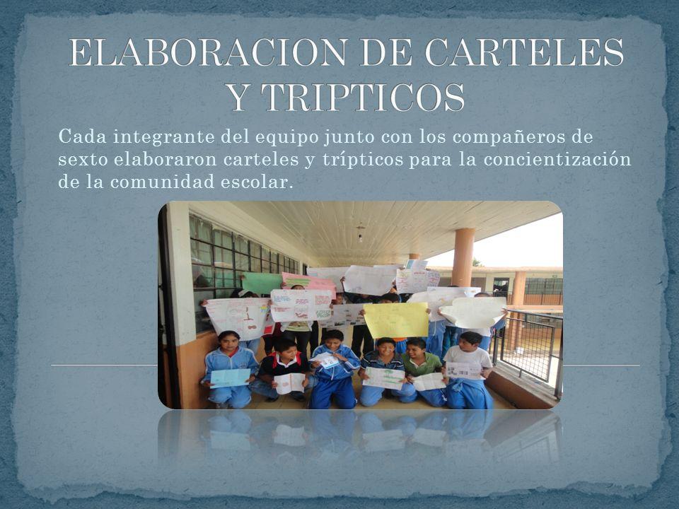 ELABORACION DE CARTELES Y TRIPTICOS