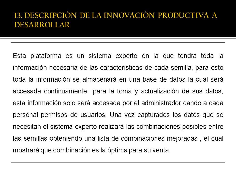 13. DESCRIPCIÓN DE LA INNOVACIÓN PRODUCTIVA A DESARROLLAR