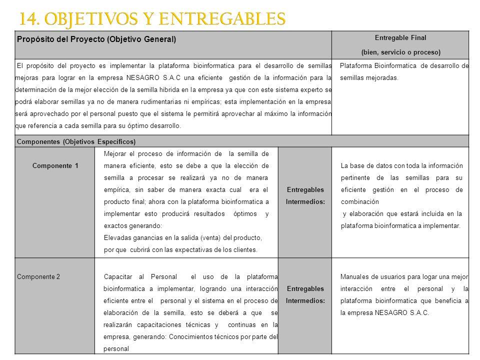 14. OBJETIVOS Y ENTREGABLES