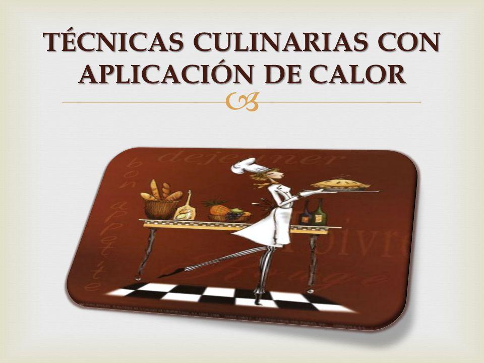 TÉCNICAS CULINARIAS CON APLICACIÓN DE CALOR