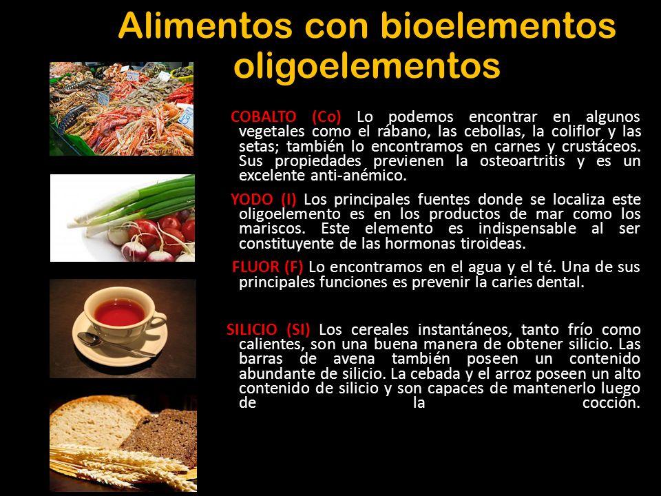 Bioelementos los elementos de la vida todos los seres vivos est n constituidos cualitativa y - Alimentos que contienen silicio ...