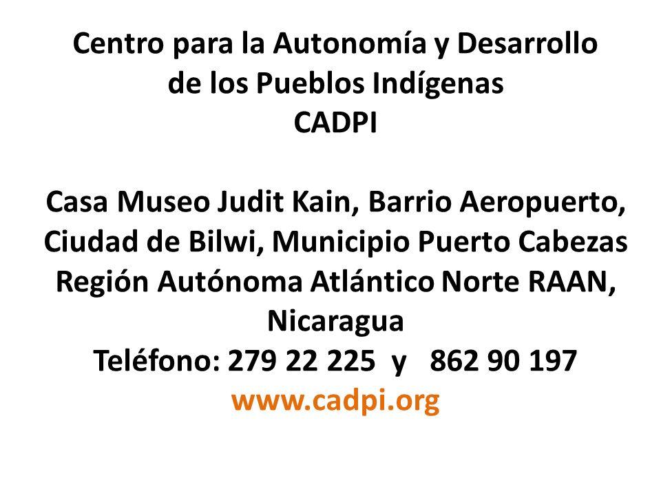 Centro para la Autonomía y Desarrollo de los Pueblos Indígenas CADPI